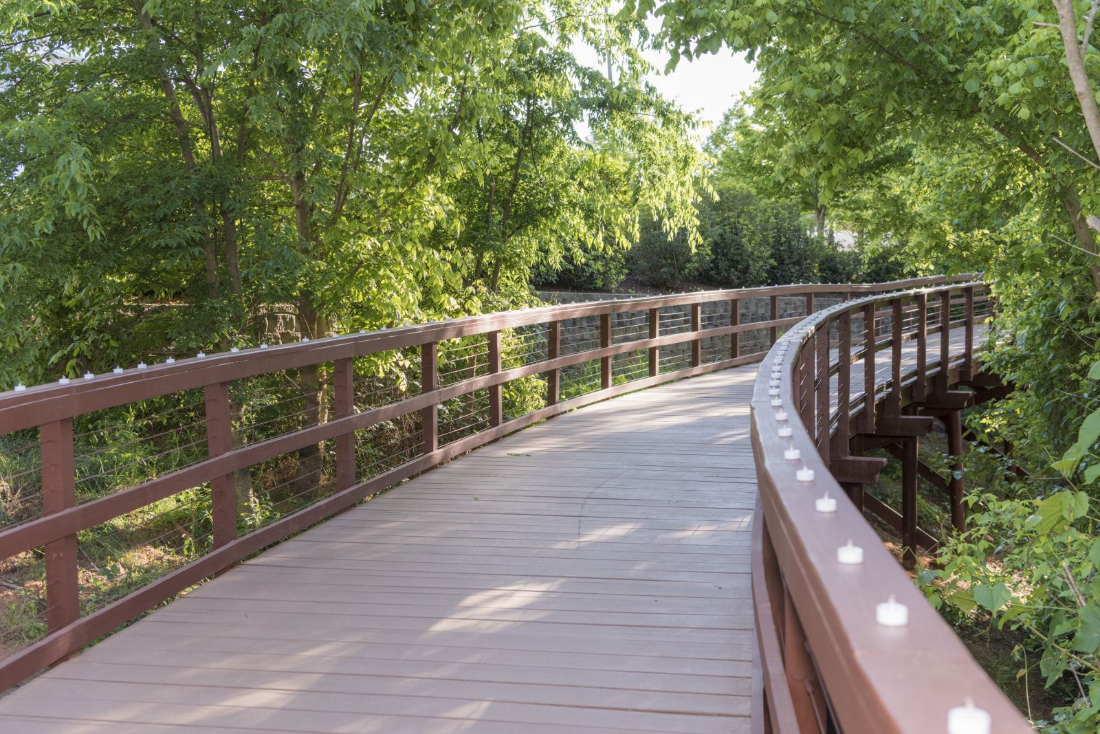 This is the boardwalk at Cancer Survivors Park in Greenville. (Photo/Provided)